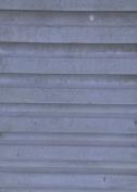 BG-RIPPETYPE-P1240